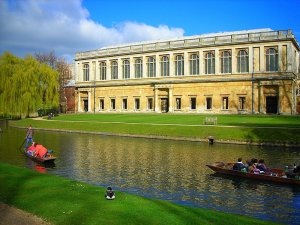 the_wren_library