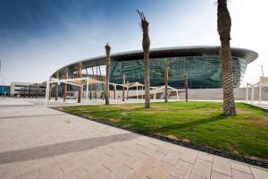 Zayed8